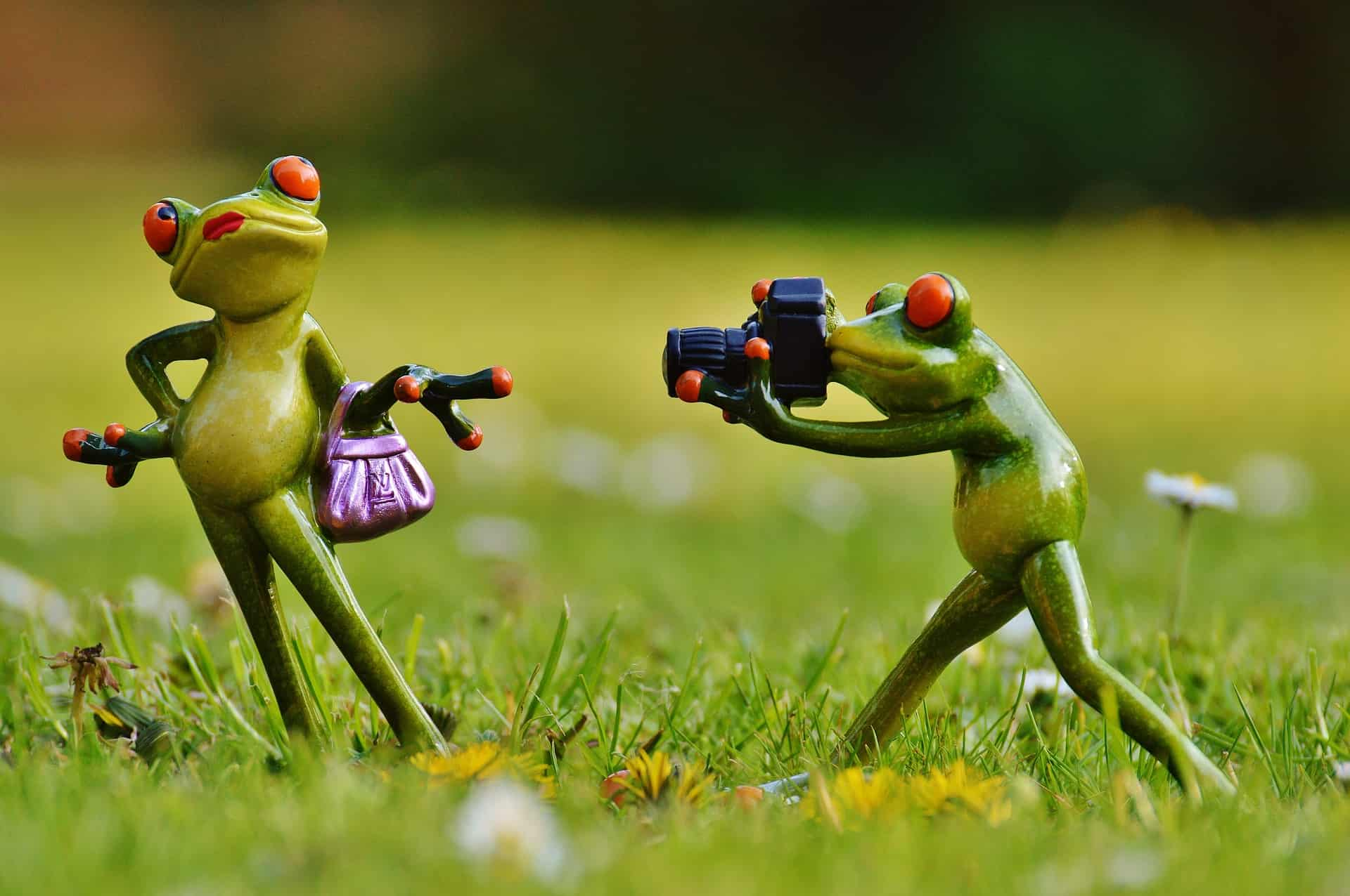 Say Cheese! Should I Include a Photo on My CV? | The CV Store Blog