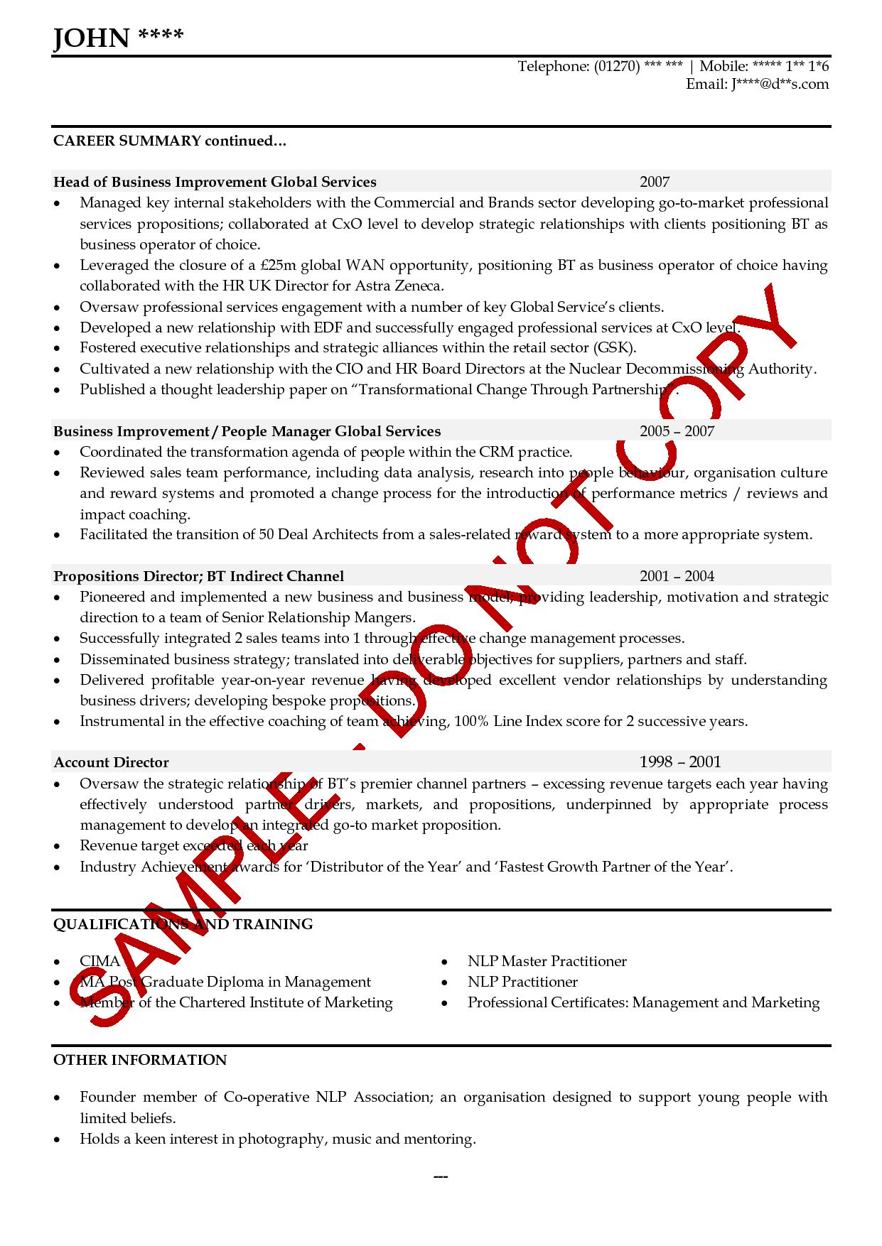executive cv examples the cv store cv review
